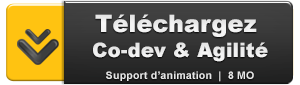 CODEV & AGILITE : LE SUPPORT